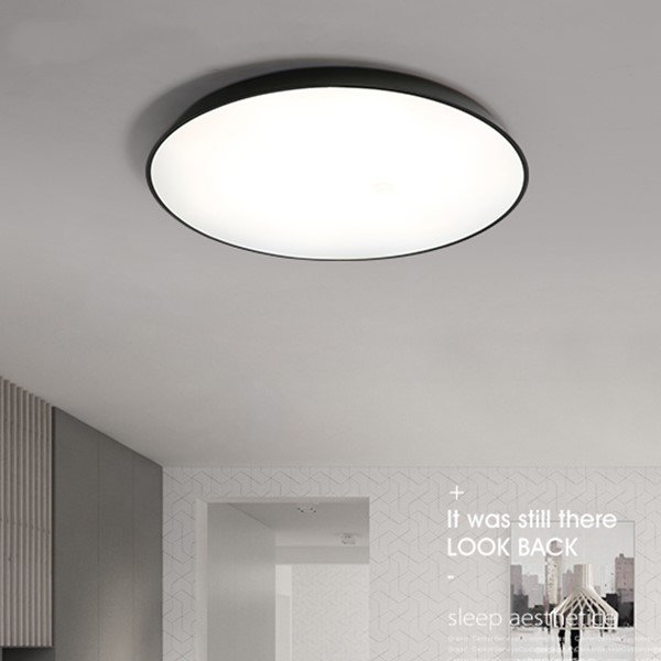 Iron Art,PVC Study/ Bedroom,Restaurant Spray Matte Modern Minimalist Ceiling Lamp
